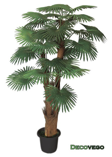 Decovego palmier tallipot r nier plante artificielle for Plante artificielle palmier