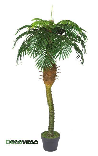 palmenbaum k nigs palme cocos kunstpflanze k nstliche. Black Bedroom Furniture Sets. Home Design Ideas