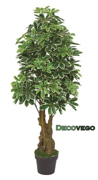 Decovego schefflera pianta albero artificiale plastica - Pianta schefflera ...
