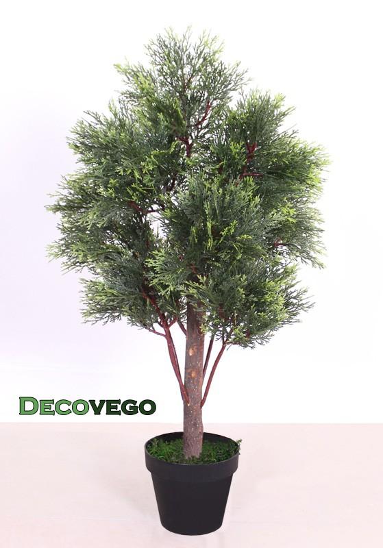 Thuya conifere plante arbre artificielle bois veritable for Plante haute artificielle