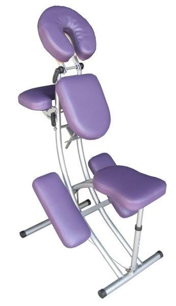 L 39 aluminium chaise de massage 8kg avec le sac choix couleur ebay - Couleur de l aluminium ...
